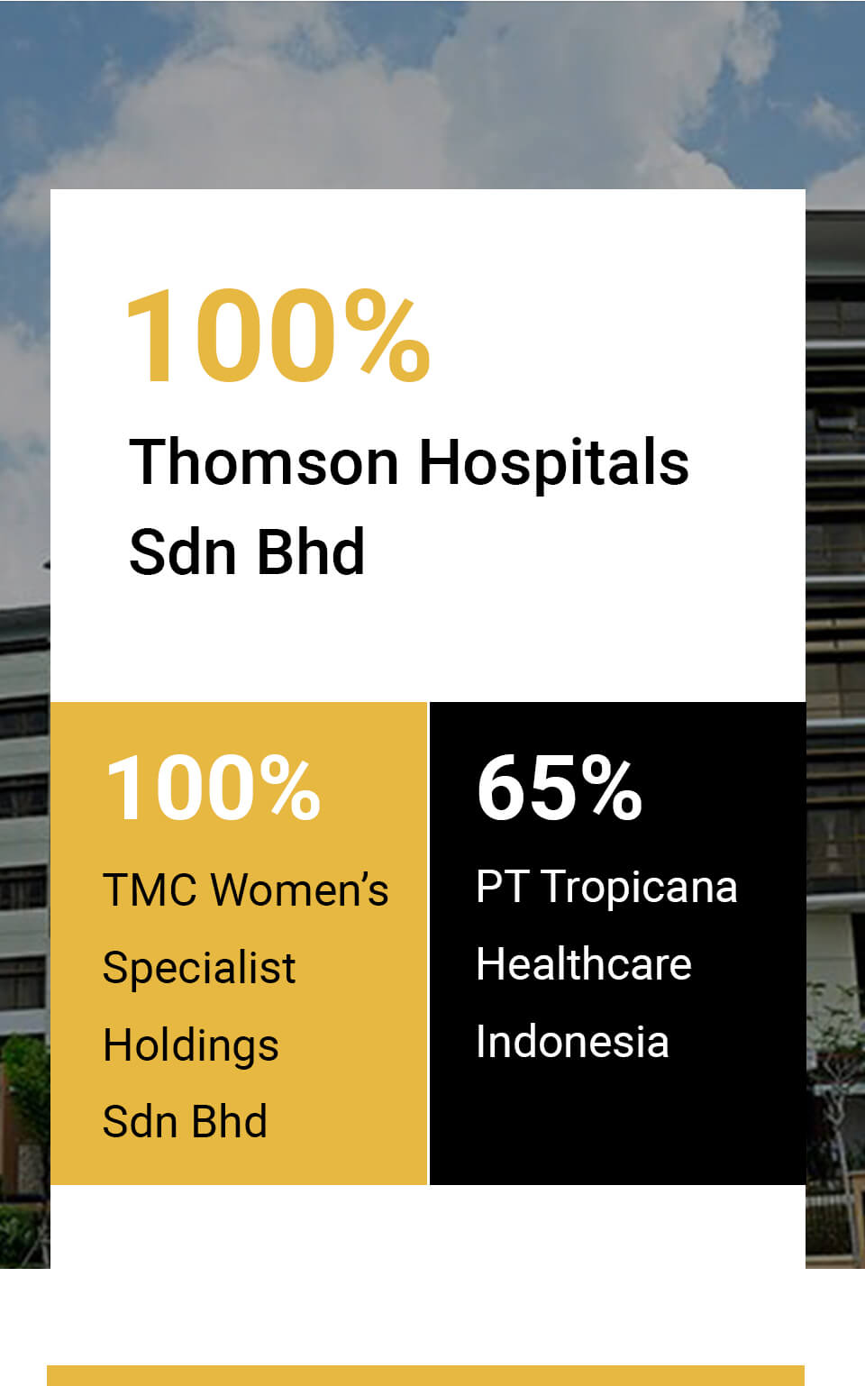 TMC-Lifestyle-company-profile-company-structure-thomson-hospitals-sdn-bhd